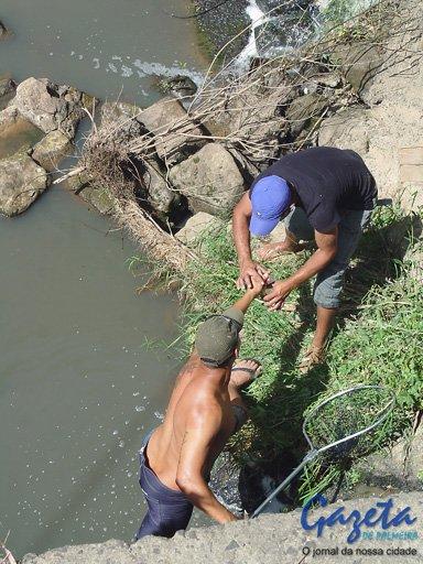 Vazamento Pelo Sensor Do óleo Fox Achado Com O Cel: Vazamento De Esgoto Contamina Rio Monjolo E Coloca Peixes