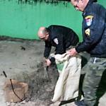 Polícia-Ambiental-(2)