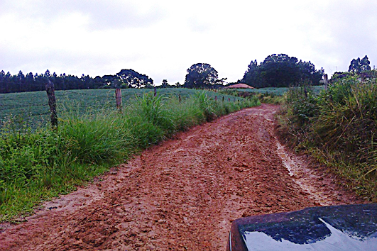 Estrada Vieiras 1