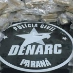 Denarc-Palmeira-01