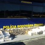 maconha_puruna5_