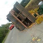 Caminhão tomba na PR 151 no Pinheiral_2