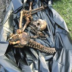 Achada ossada humana em São Mateus do Sul