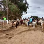 cavalgada domingo