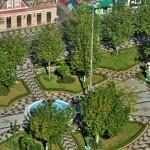 Arborização (2)