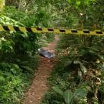 Mulher é morta a facadas em Irati e autor é preso em Palmeira após tentar suicídio - Foto: Tadeu Stefaniak