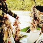Pesca predatória rio Iguaçu_2