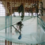 Rodoviária de Palmeira é alvo de vandalismo-1