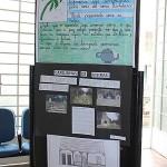 Uma pitada da nossa história 2_foto prefeitura de Palmeira