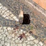 Local onde aconteceu o homicídio na Rua Vicente Machado 27_05_18