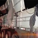 Caminhão tombado na PR 151 em São João do Triunfo_2