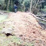Ocorrência Polícia Ambiental em Boqueirão em Palmeira