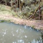 Ocorrência Polícia Ambiental em Boqueirão em Palmeira_2