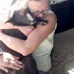 Bombeiros e voluntários resgatam cadela de dentro de galeria de água pluvial_2