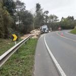 Caminhão carregado de madeira tomba na PR 151 em Coxilhão _São João do Triunfo_2