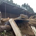 Caminhão carregado de madeira tomba na PR 151 em Coxilhão _São João do Triunfo_5