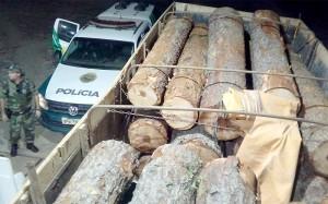 Polícia Ambiental apreende toras de pinheiro