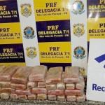 Cocaína apreendida em São Luiz do Purunã