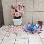 Fotos do vansalismo no Cemitério São João do Tiunfo 6