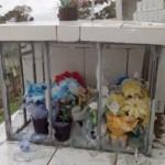 Fotos do vansalismo no Cemitério São João do Tiunfo 7