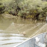 Polícia Ambiental apreende redes no Rio Iguaçu na Vila Palmira_1