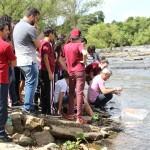 5 mil alevinos são soltos no Rio Iguaçu em Porto Amazonas_7_foto divulgação