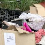 Descarte irregular de resíduos no Distrito Industrial_4