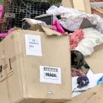 Descarte irregular de resíduos no Distrito Industrial_5