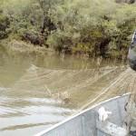 IAP proíbe pesca no período da Piracema__foto Divulgação Polícia Ambiental