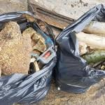 Ação de limpeza no Rio Iguaçu pelo Rotary Club de Palmeira e Iate Clube em comemoração ao Dia do Rio-foto divulgação (4)