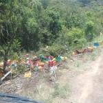 Caminhão carregado de bebidas tomba na PR 151 (4)