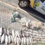 Três pessoas são presas por pesca predatória em Porto Amazonas_1