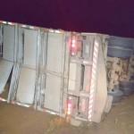 Caminhão carregado de sauínos tomba na PR 151_6