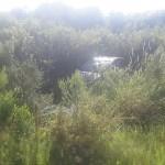 Veícula sai da pista na PR 151 próximo ao Rio Caniú_4