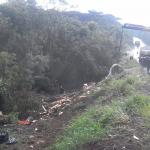 Caminhão carregado com bobinas de papel capota na PR 151 sexta-feira_01-02-2019 (3)
