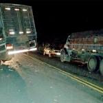 Acidente entre caminhão carregado de boi e Fiat Uno deixa motorista morto-1