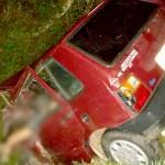 Acidente entre caminhão carregado de boi e Fiat Uno deixa motorista morto-6