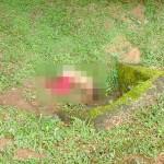 Mulher desaparecida em Porto Amazonas é econtrada morta na PR-427_foto Rede Social WhatsApp