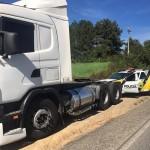 Caminhão roubado em São Mateus do Sul é recuperado na PR-151 em Palmeira-2