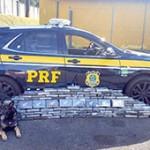 PRF apreende 150  toneladas de drogas no Paraná e 22 só nos Campos Gerais -2 - Divulgação PRF