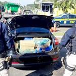 PRF_apreende 150  toneladas de drogas no Paraná e 22 só nos Campos Gerais - Divulgação PRF